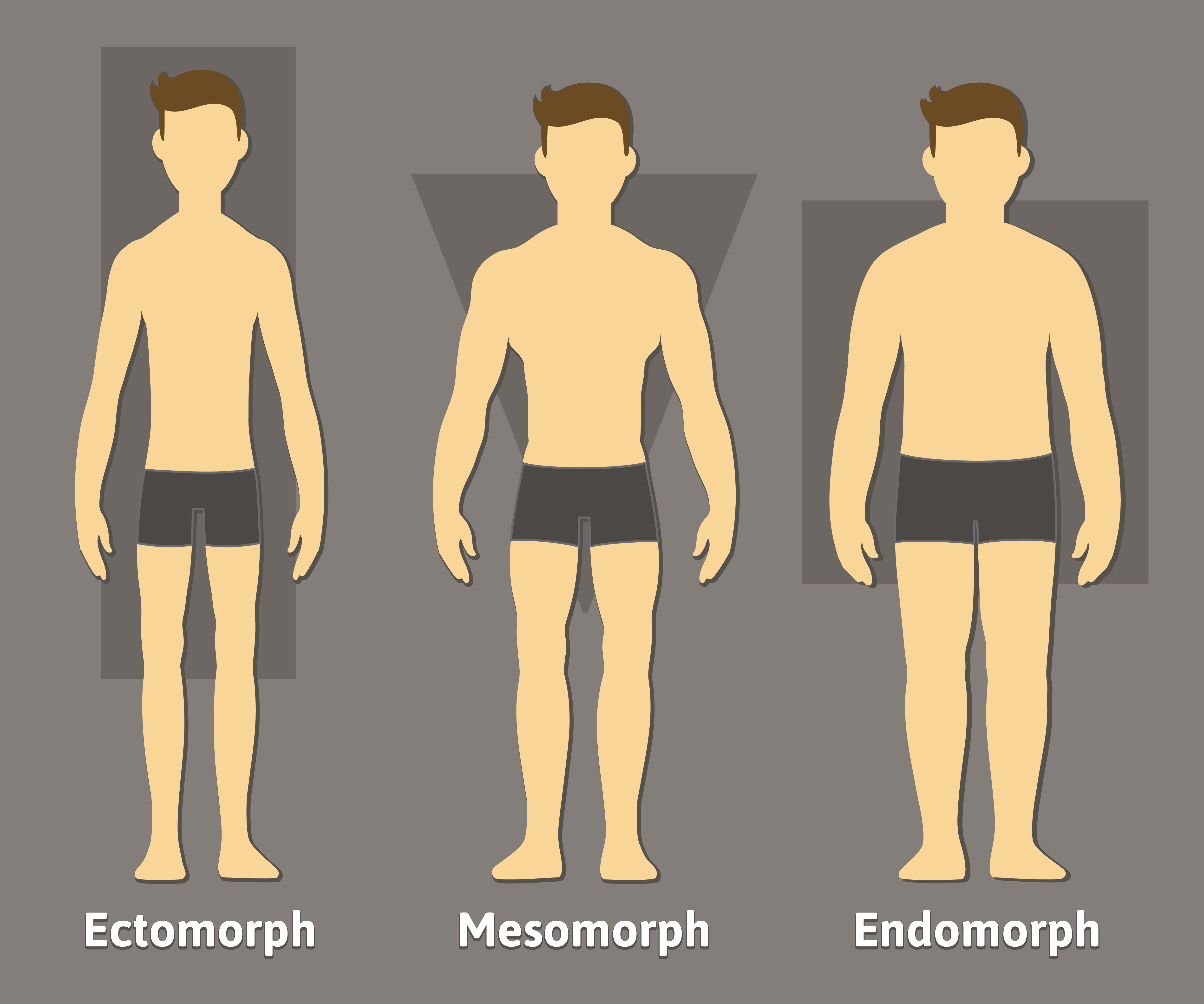 Main differences in men body types and shapes - Men's Skin